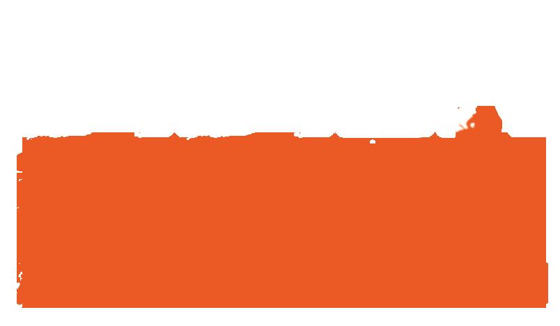 dider bile logo